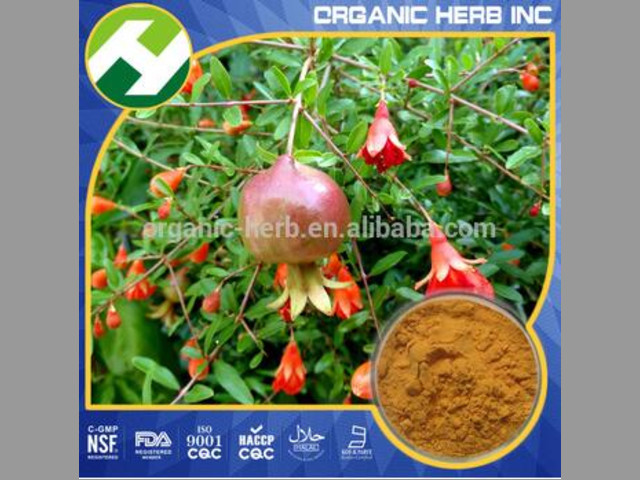 Extract Of Pomegranate